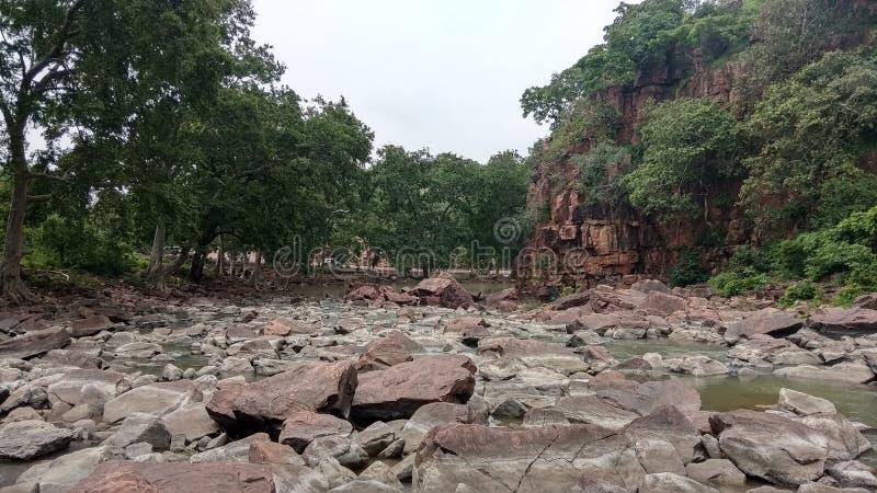 Rio da paisagem, montanha, floresta, árvores verdes, calmas fotos de stock royalty free