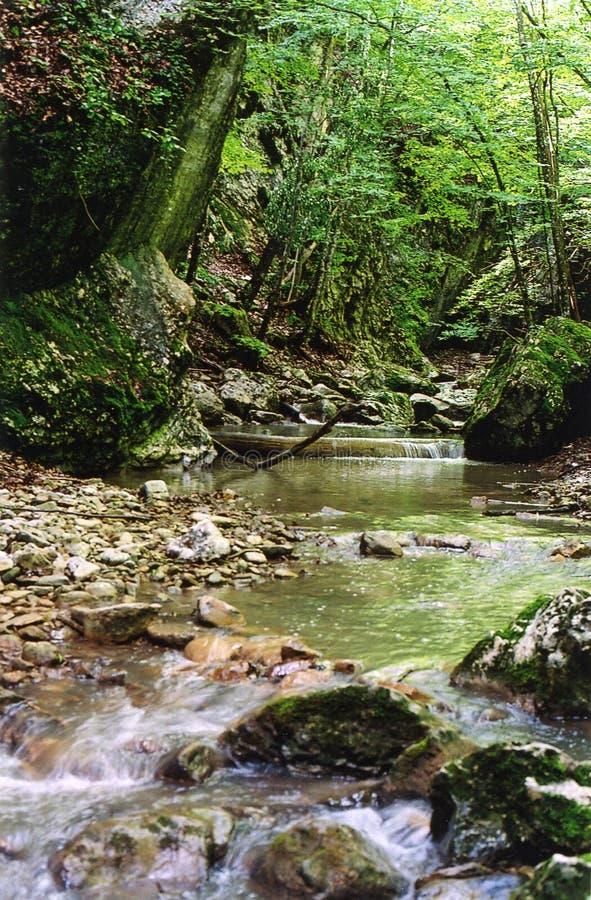 Rio das montanhas em Crimeia imagens de stock royalty free