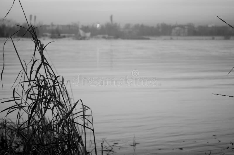 Rio de Angara em Rússia no por do sol preto e branco imagem de stock