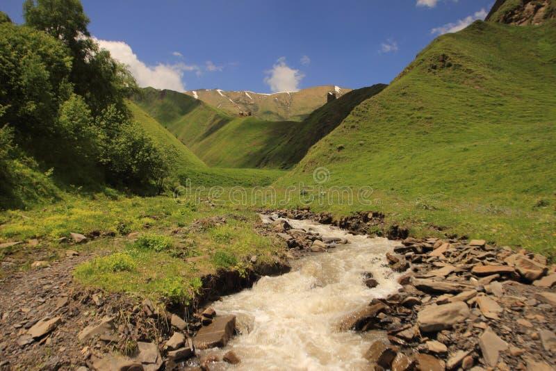 Rio de Argun em Khevsureti, Geórgia imagens de stock