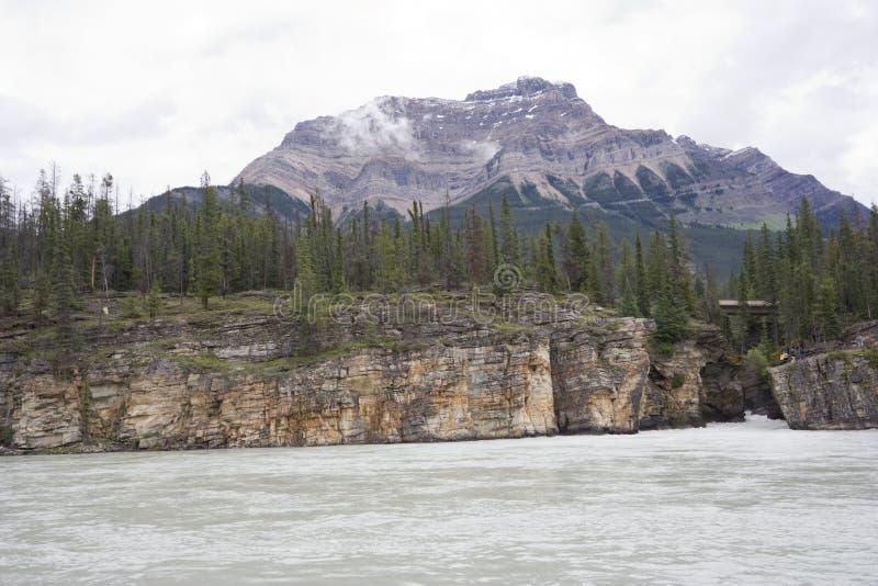 Rio de Athabasca com montanha da pirâmide imagem de stock royalty free