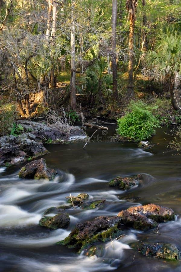 Rio de Hillsborough, Florida fotos de stock