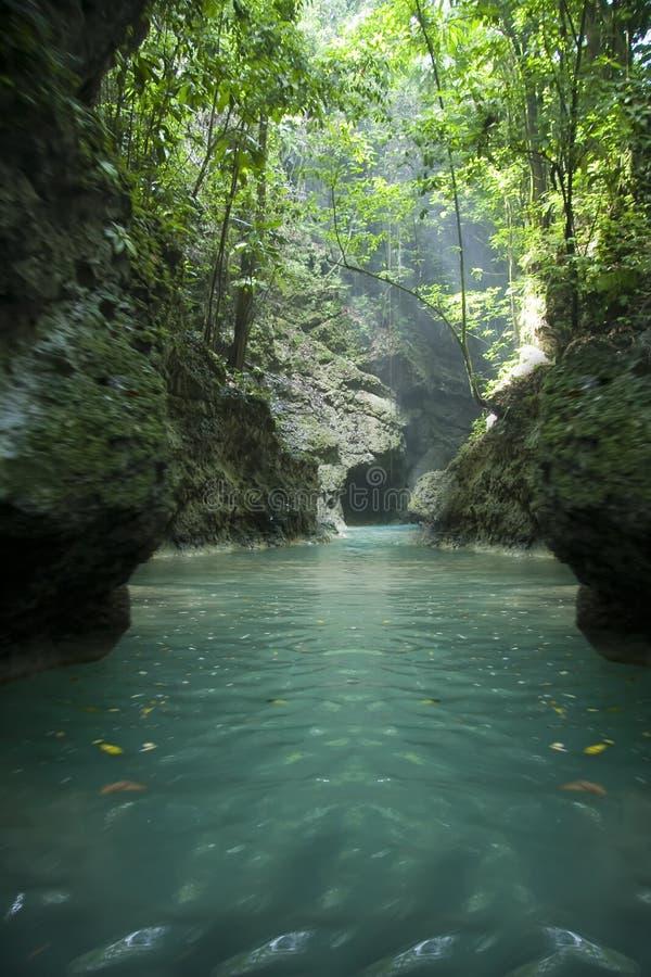 Rio de Jamaica fotografia de stock royalty free