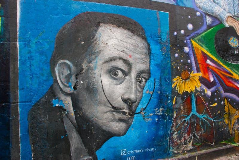 RIO DE JANEIRO, BRASIL: Grafittis bonitos na parede, pintada pelo artista Salvador Dali ilustração stock