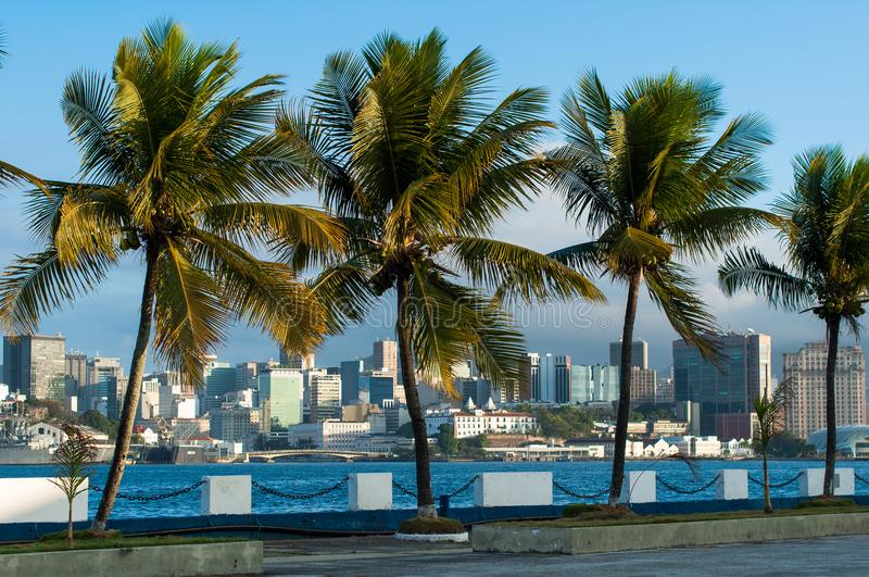 View to the City Through Palm Trees. Rio de Janeiro City Downtown View Through Palm Trees From Military Island royalty free stock images