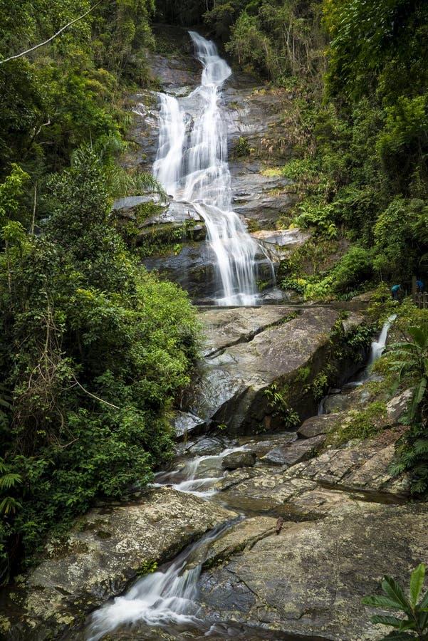 Rio De Janeiro Waterfall in Tijuca-Bos stock foto