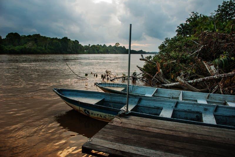 Rio de Kinabatangan, Bornéu, Sabah Malaysia Paisagem da noite das árvores, da água e dos barcos fotografia de stock