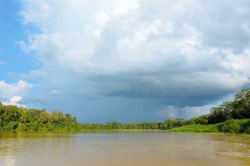 Rio de Kinabatangan, Malásia, Bornéu fotografia de stock royalty free