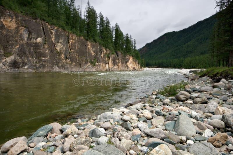 Rio de Kitoy. Sibéria. Montanhas do leste de Sayan. imagens de stock