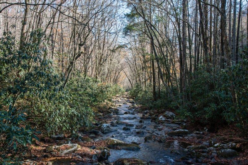 Rio de Oconaluftee, parque nacional de Great Smoky Mountains fotografia de stock royalty free