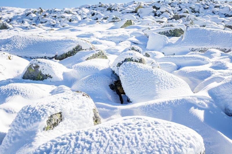 Rio de pedra bonito na montanha do inverno - Vitosha, Bulgária imagem de stock