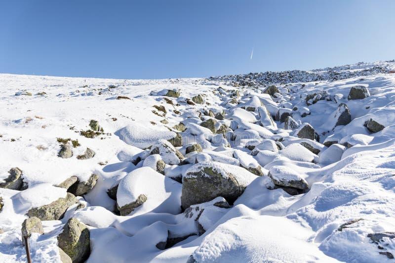 Rio de pedra bonito na montanha do inverno - Vitosha, Bulgária imagens de stock