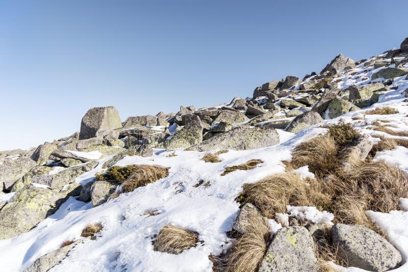 Rio de pedra bonito na montanha do inverno - Vitosha, Bulgária fotos de stock