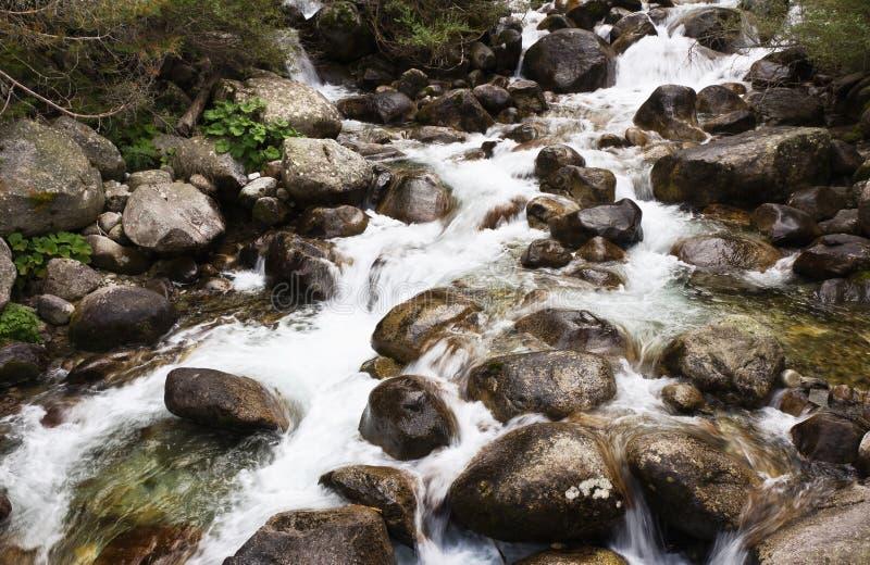 Rio de pedra em Bansko, Bulgária fotografia de stock royalty free
