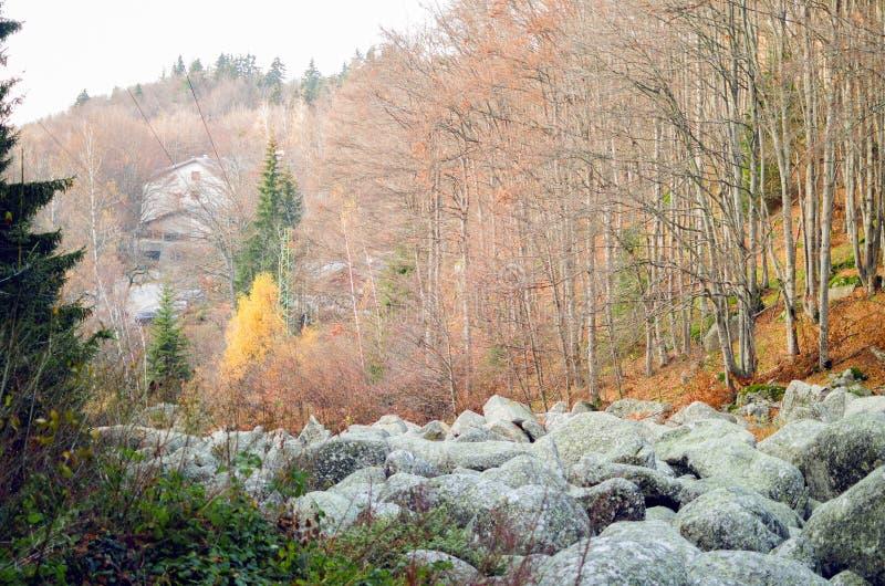 Rio de pedra grande imagens de stock