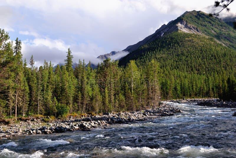 Rio de Shumak perto das molas de mineral de Shumak fotografia de stock