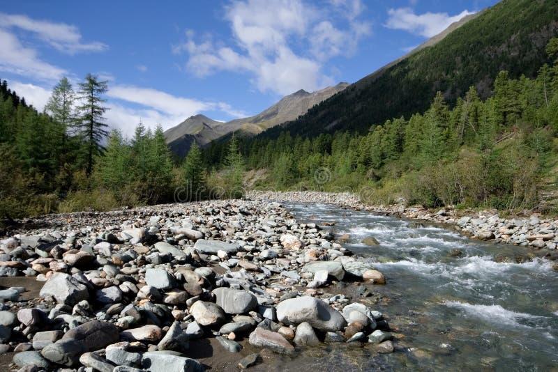 Rio de Shumak. Sibéria. Montanhas do leste de Sayan. imagens de stock royalty free