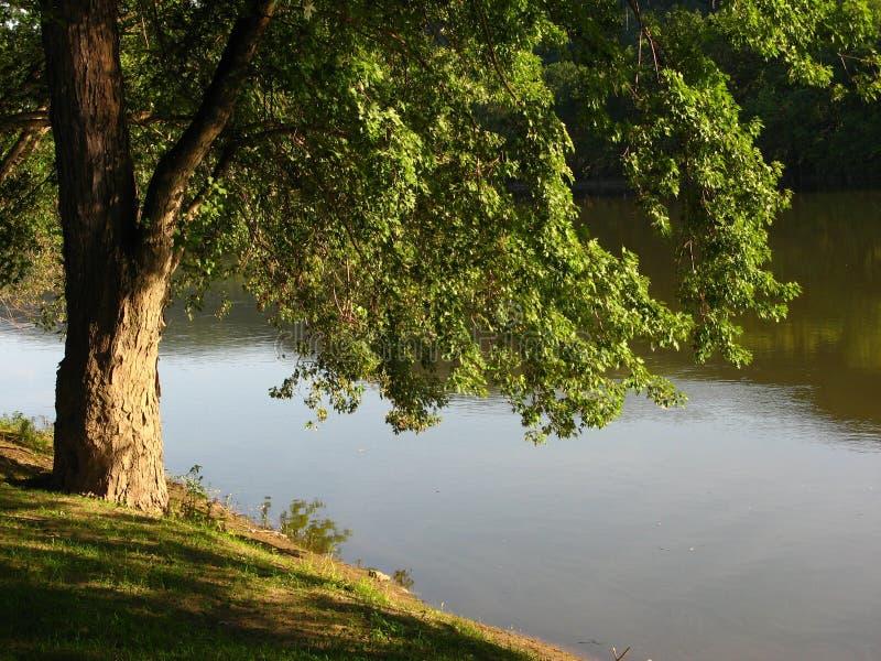 Rio de Susquehanna imagem de stock