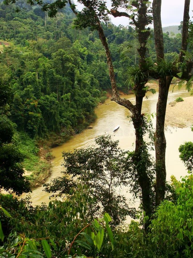 Rio de Tembeling, Taman Negara, Malásia imagens de stock