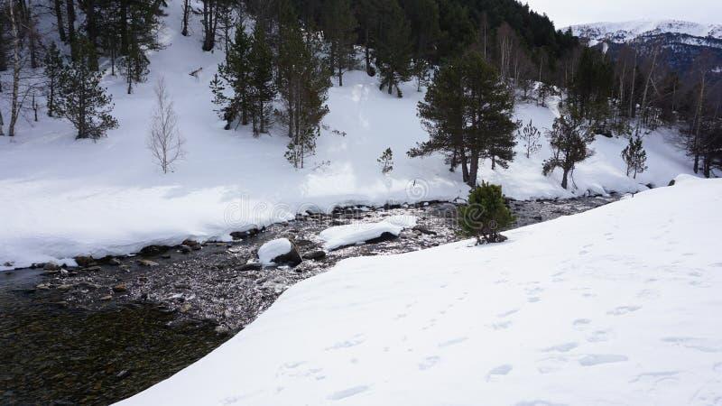 Rio dentro com neve fotos de stock