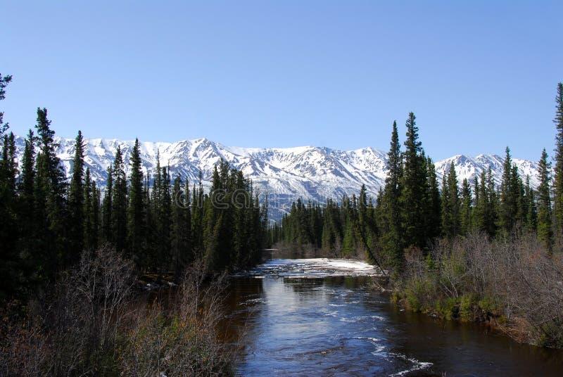 Rio do Alasca selvagem fotos de stock