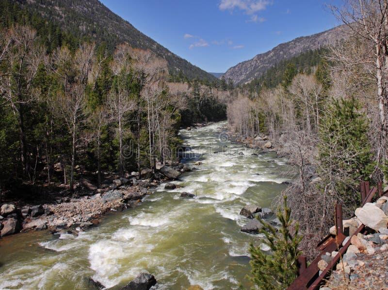 Rio dos Animas no Colorado Montanhas Rochosas imagens de stock royalty free