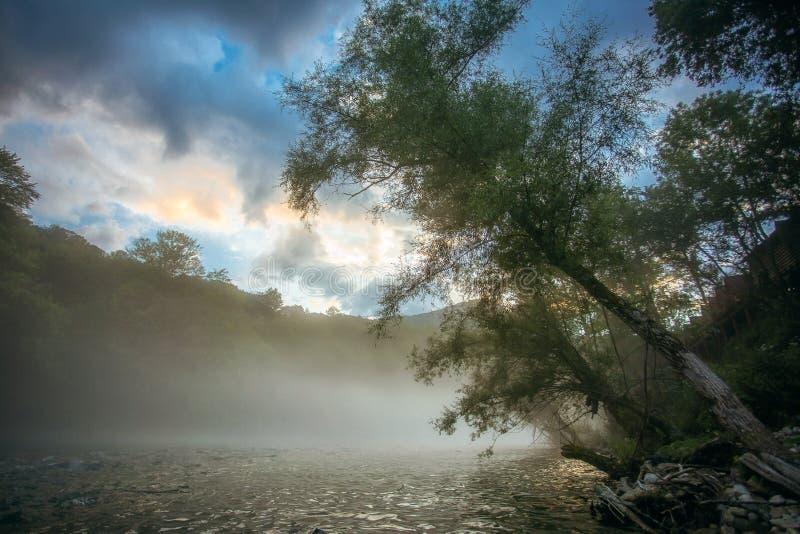 Rio Drina com névoa fotografia de stock royalty free