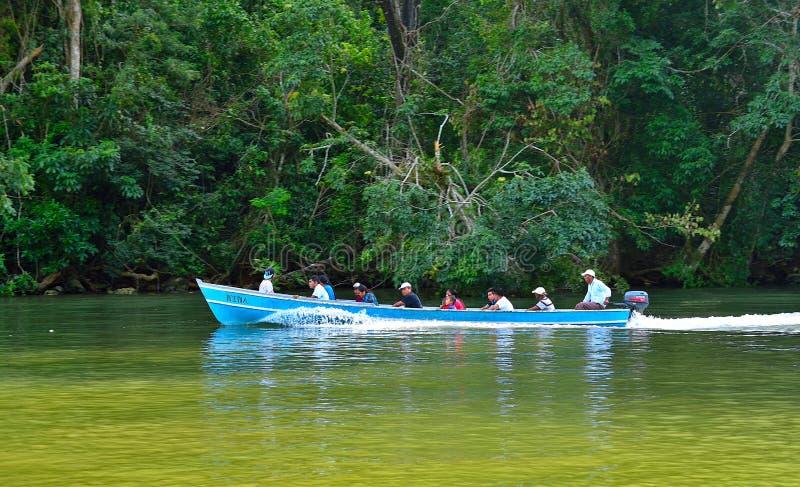 Rio Dulce guatemala royaltyfri bild