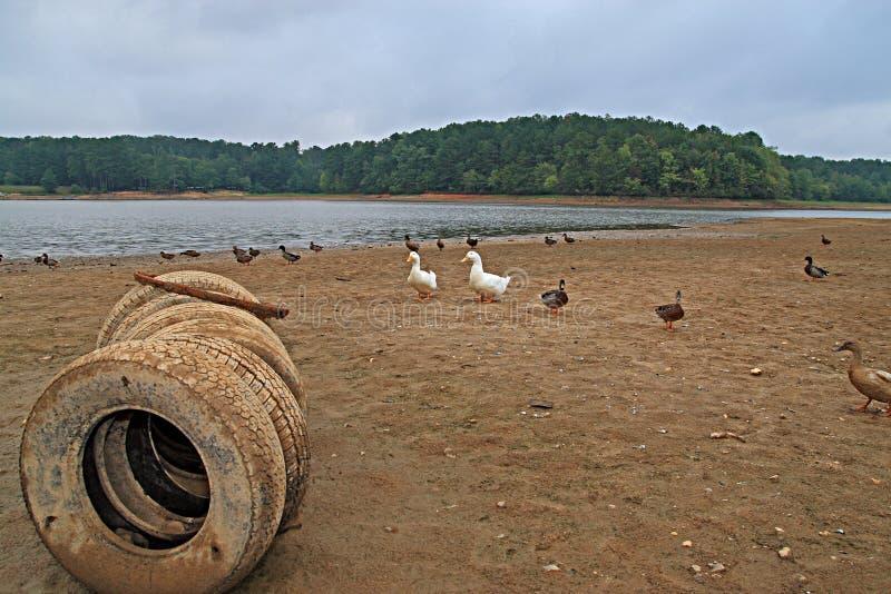 Rio durante o esboço imagens de stock