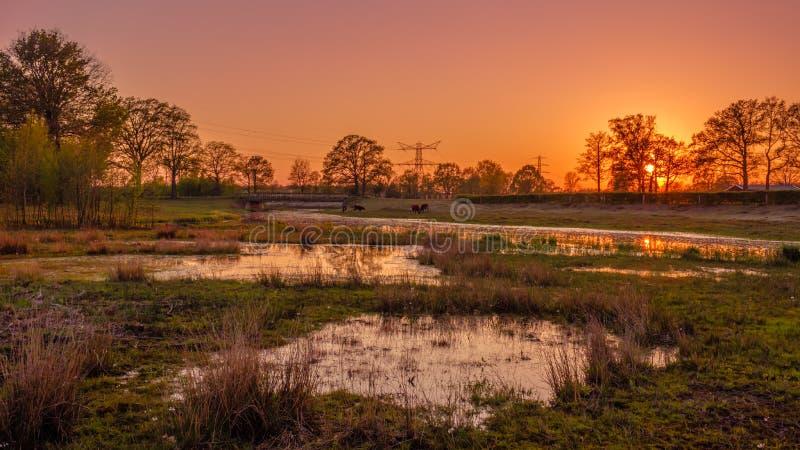Rio e lagoas em uma paisagem holandesa durante o por do sol perto de Almelo imagem de stock