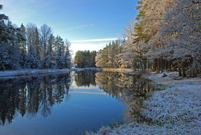 Rio e madeiras no inverno   imagens de stock royalty free