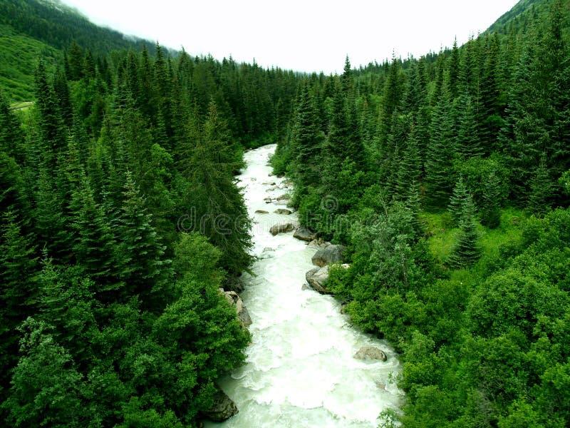 Rio em Alaska fotos de stock