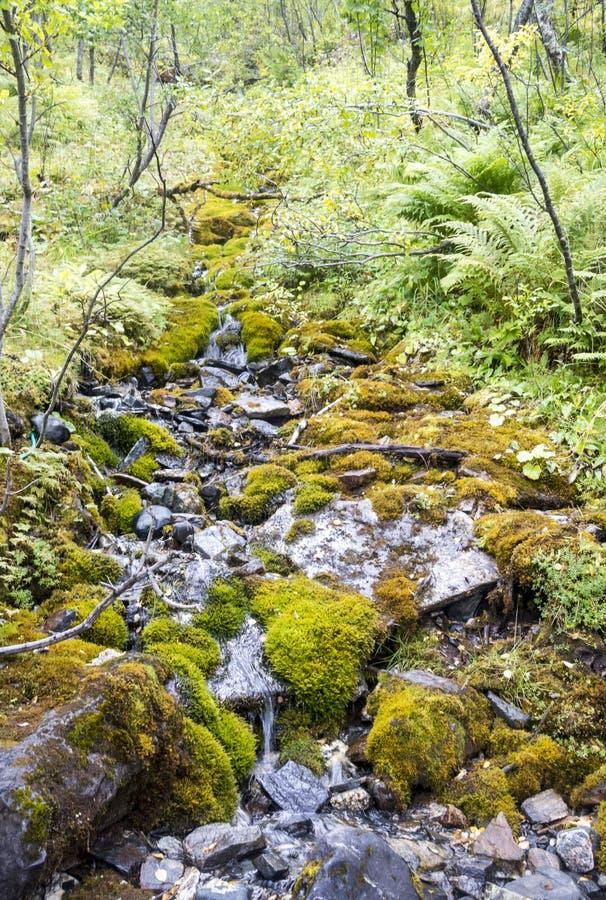 Rio em Noruega do norte imagens de stock