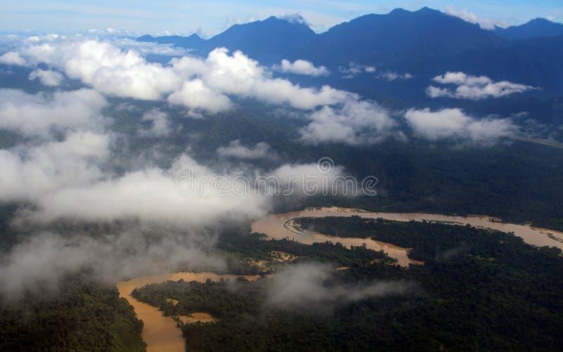 Rio enlameado Bornéu de Brown foto de stock royalty free