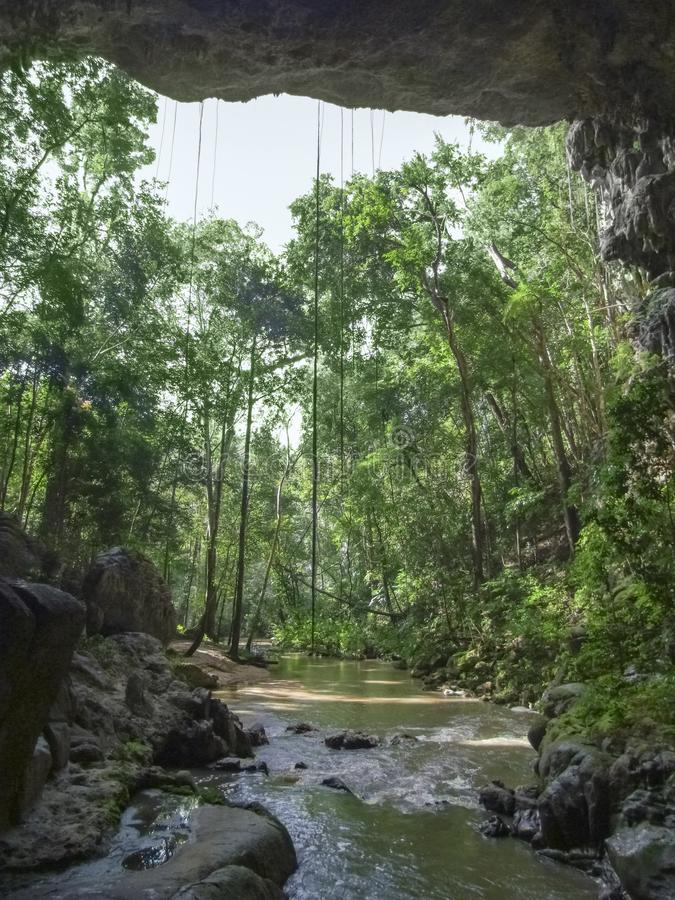 Rio Frio a Belize fotografia stock libera da diritti