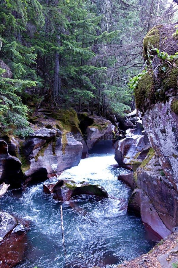 Rio Glacial Esculpido em Bedrock foto de stock