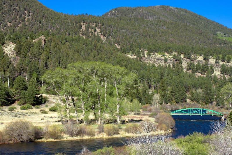 Rio Grande corre através do San Juan Mountains na estrada a Creede em Colorado do sul foto de stock royalty free