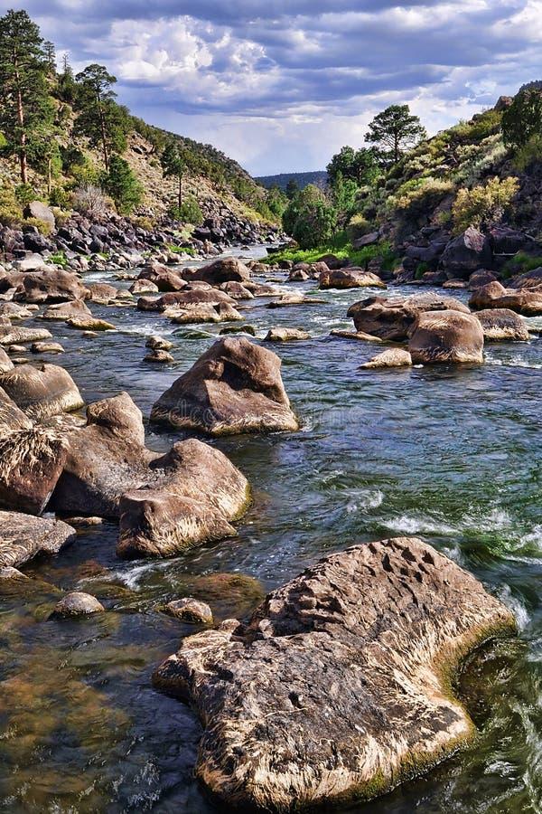 Rio Grande River Stock Image