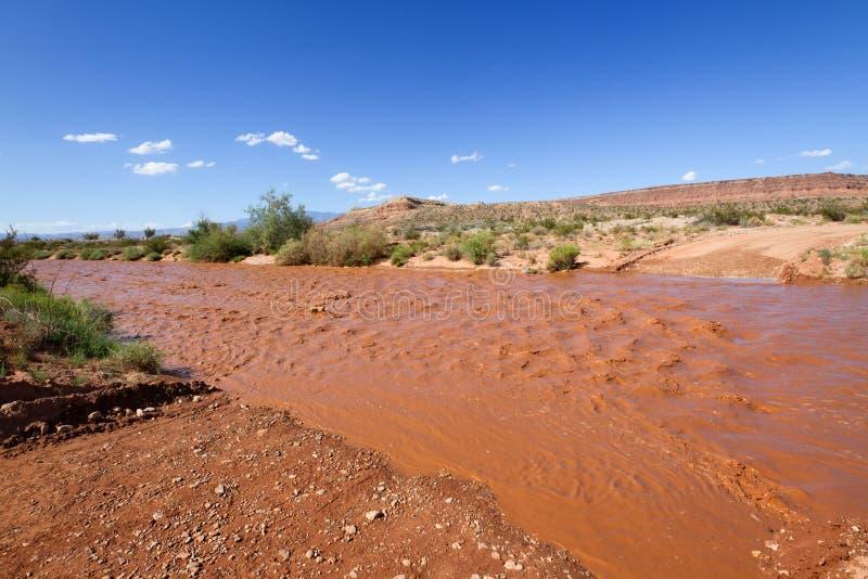 Rio inundado foto de stock