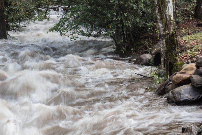 Rio inundado em Great Smoky Mountains na queda foto de stock