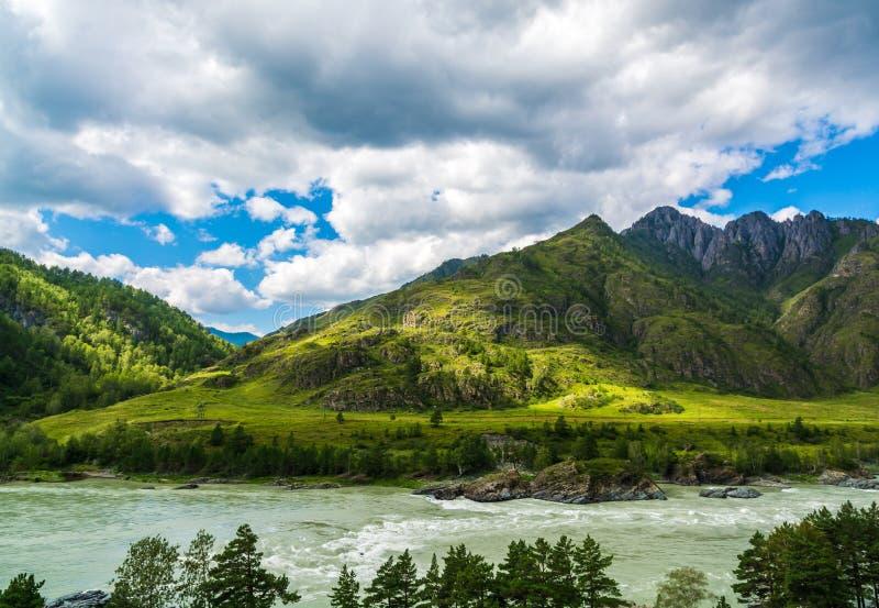 Rio Katun da montanha, Rússia, Sibéria, montanhas de Altai, ri de Katun foto de stock royalty free