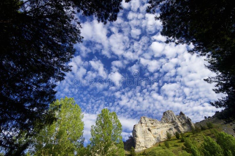Rio Lobos foto de archivo libre de regalías