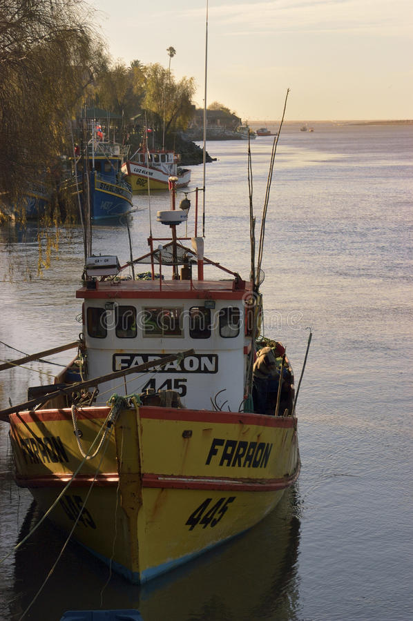 Rio Maule, Chile imagen de archivo libre de regalías