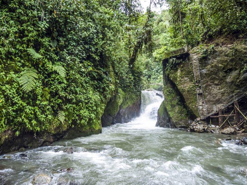 Rio Mindo, Equateur occidental, rivière photographie stock