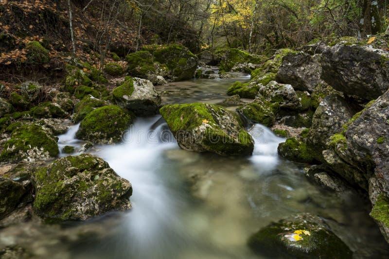 Rio Mundo źródło, Naturalny park Los Calares Del rÃo Mundo y De Los angeles Sima zdjęcie royalty free
