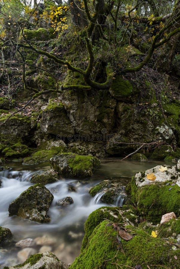 Rio Mundo-bron, Natuurreservaat Los Calares del rÃo Mundo y DE La Sima stock foto's