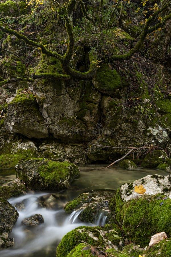 Rio Mundo-bron, Natuurreservaat Los Calares del rÃo Mundo y DE La Sima royalty-vrije stock foto