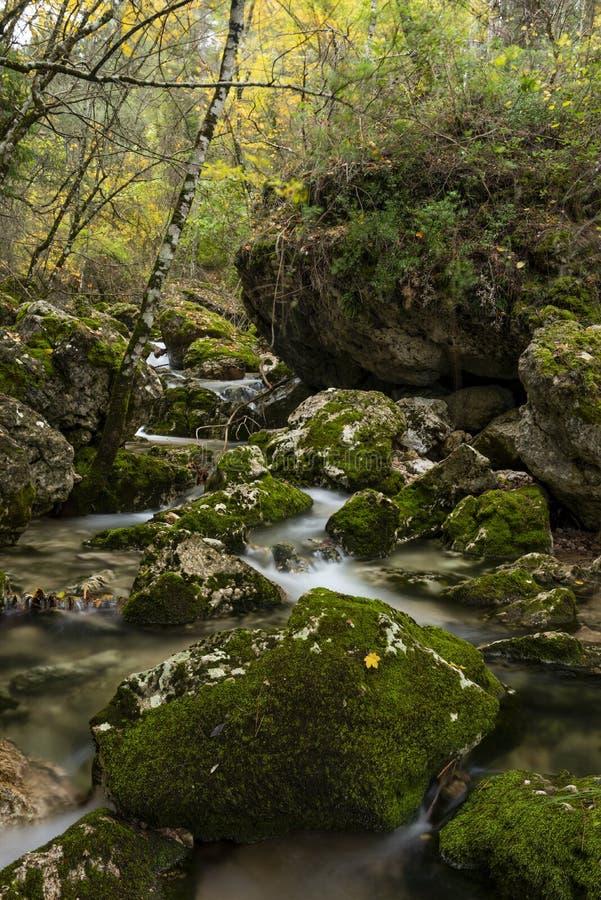 Rio Mundo-bron, Natuurreservaat Los Calares del rÃo Mundo y DE La Sima stock afbeelding