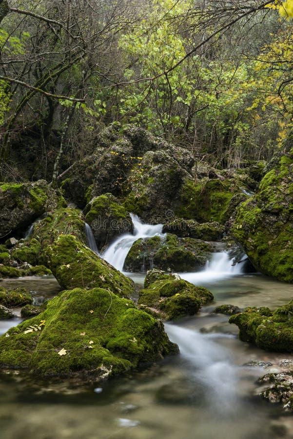 Rio Mundo-bron, Natuurreservaat Los Calares del rÃo Mundo y DE La Sima, Siërra DE Alcaraz y del Segura, Albacete provincie, stock fotografie