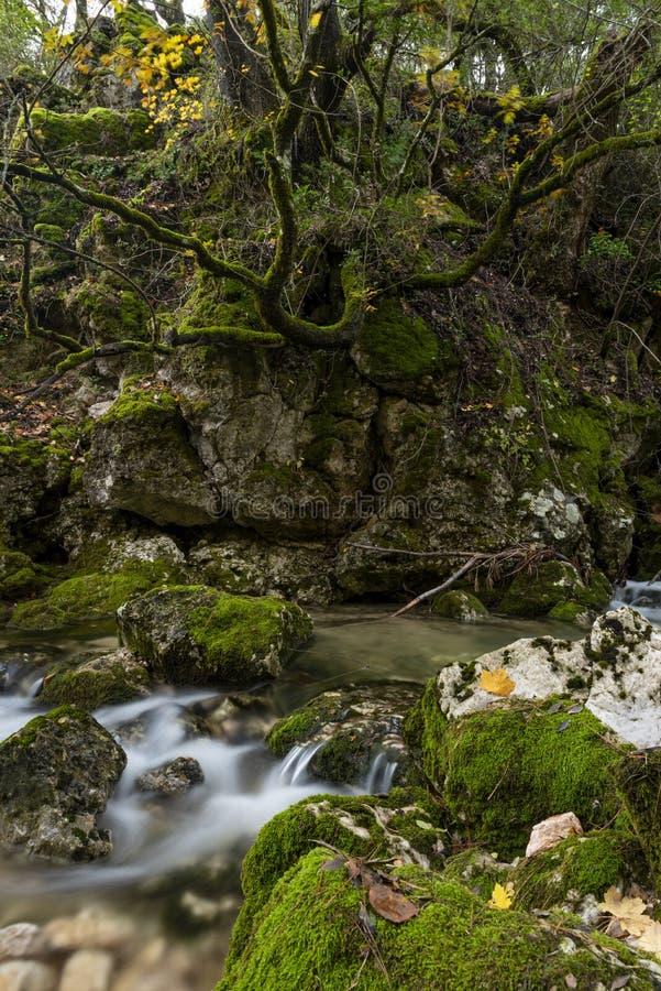 Rio Mundo-bron, Natuurreservaat Los Calares del rÃo Mundo y DE La Sima, Siërra DE Alcaraz y del Segura, Albacete provincie, royalty-vrije stock foto's